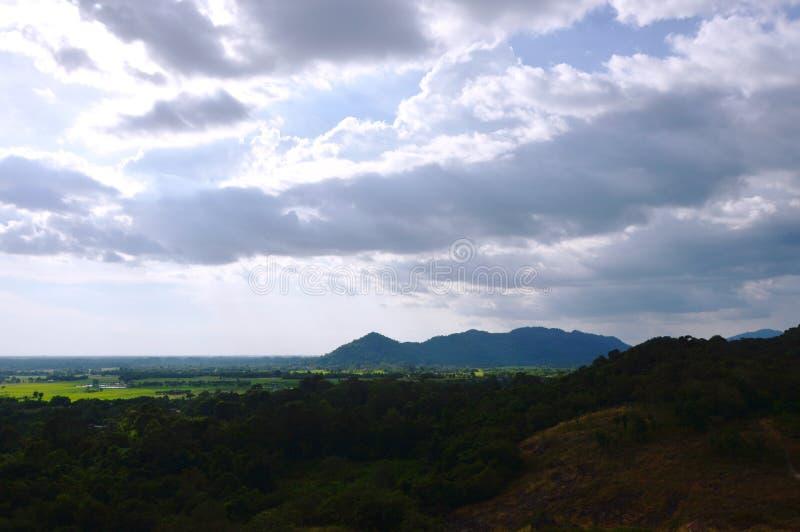 Landschap van het gebied die van de grasbloem van wind op de berg van Khao Lon in Thailand blazen stock afbeelding