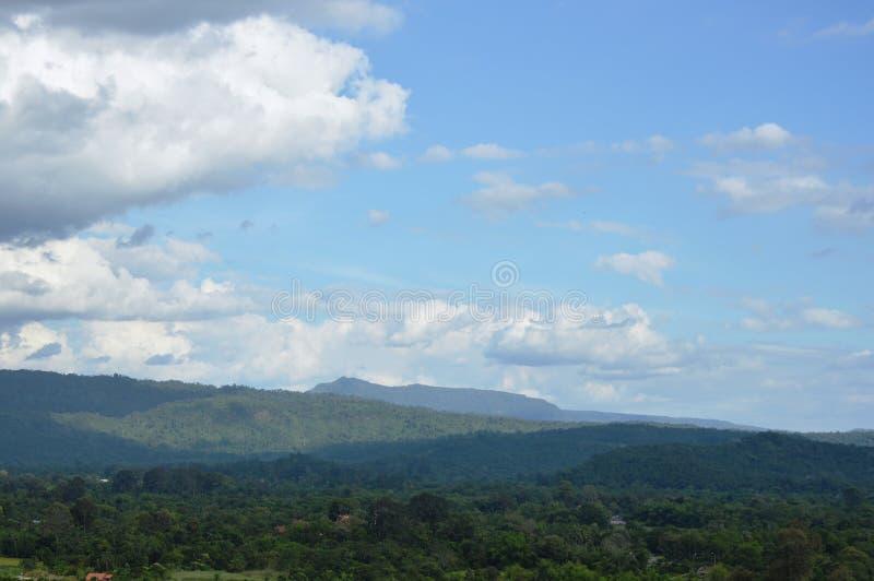 Landschap van het gebied die van de grasbloem van wind op de berg van Khao Lon in Thailand blazen royalty-vrije stock foto's