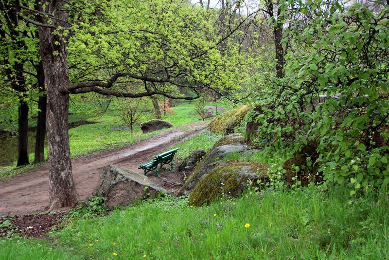 Landschap van het groene die bos met het lopen van weg, stenen door mos een bank worden behandeld stock foto's