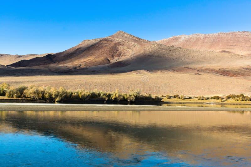 Landschap van het meer, de steppe en de bergen in Westelijk Mongolië Rusland royalty-vrije stock foto's