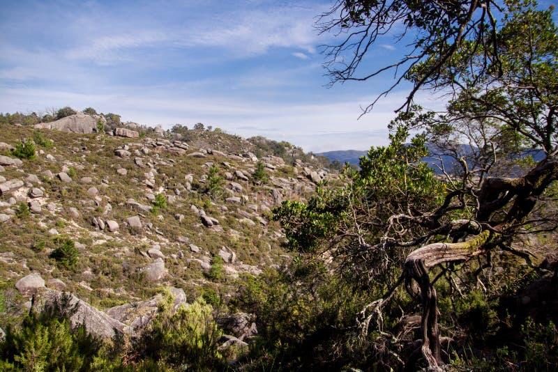 Landschap van het nationale park van Peneda geres in Portugal royalty-vrije stock foto's