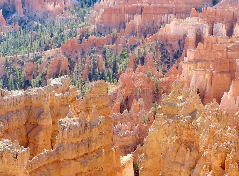 Landschap van het Park van de Canion van Bryce het Nationale royalty-vrije stock foto's