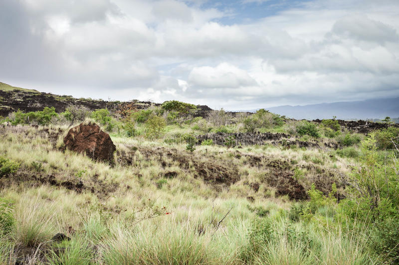 Landschap van het roodachtige lavagebied door Masaya vulkaan in Nicarag stock afbeeldingen
