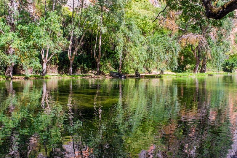 Landschap van het spiegelmeer door bos wordt omringd dat royalty-vrije stock foto's