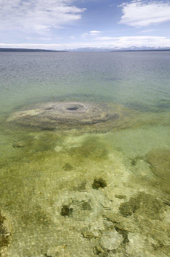 Landschap van het Yellowstone het nationale park stock foto's