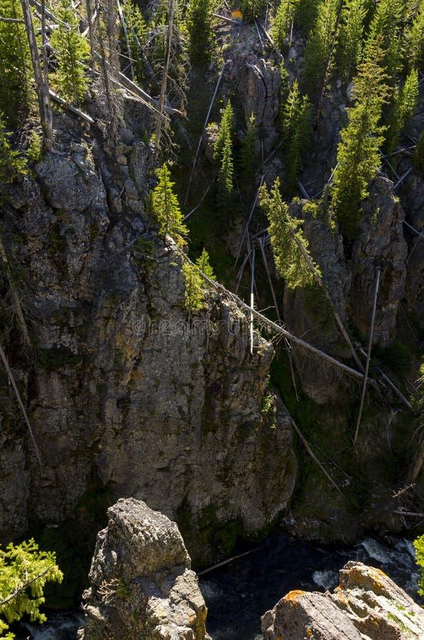 Landschap van het Yellowstone het nationale park royalty-vrije stock fotografie