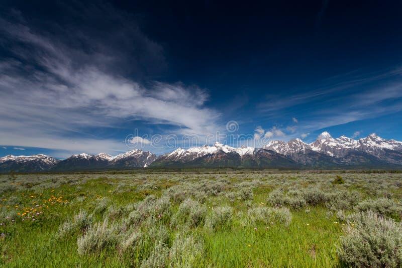 Landschap van het Yellowstone het Nationale Park stock fotografie
