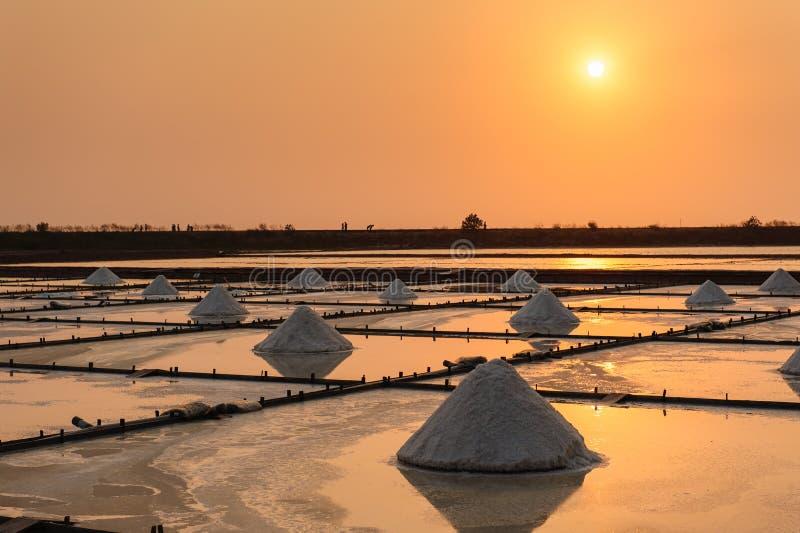 Landschap van het zoute landbouwbedrijf stock foto's
