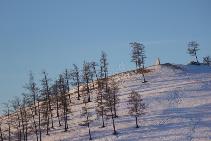Landschap van heuvel dat door sneeuw en pijnboomboom dichtbij Khovsgol in Mongolië wordt behandeld stock afbeeldingen