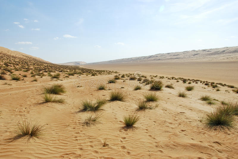 Landschap van Leeg Kwart, Oneffenheidsal Khali Desert royalty-vrije stock foto's