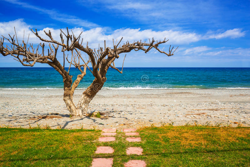 Landschap van Maleme-strand op Kreta royalty-vrije stock afbeeldingen