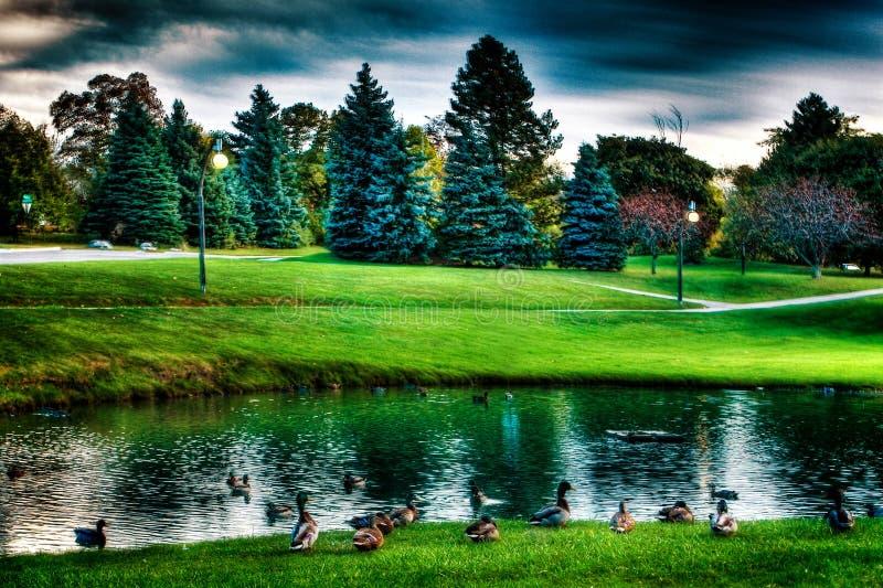 Landschap van meer en bomen stock afbeelding