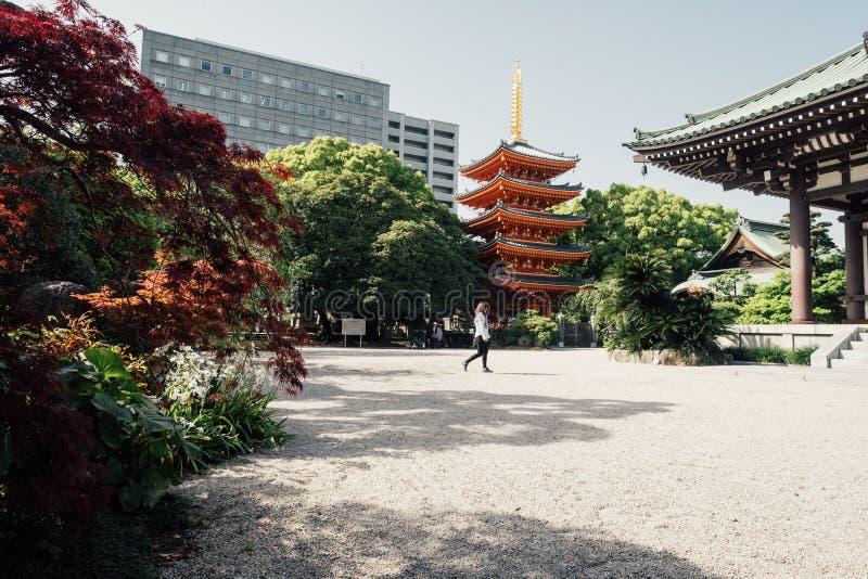 Landschap van mooie en kleurrijke tuin Japanse stijl in TOC royalty-vrije stock fotografie