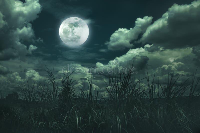 Landschap van nachthemel met wolken Mooie heldere volle maan boven wildernisgebied in bos, de achtergrond van de sereniteitsaard royalty-vrije stock foto's