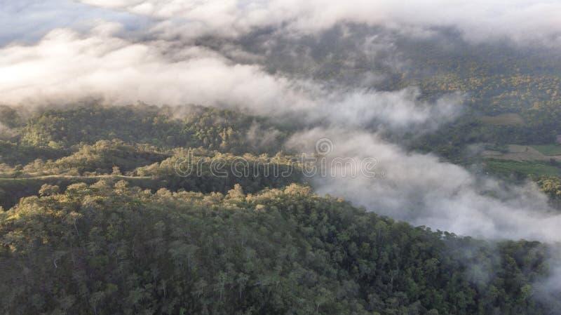Landschap van Ochtendmist met Berglaag bij het noorden van Thailand royalty-vrije stock foto