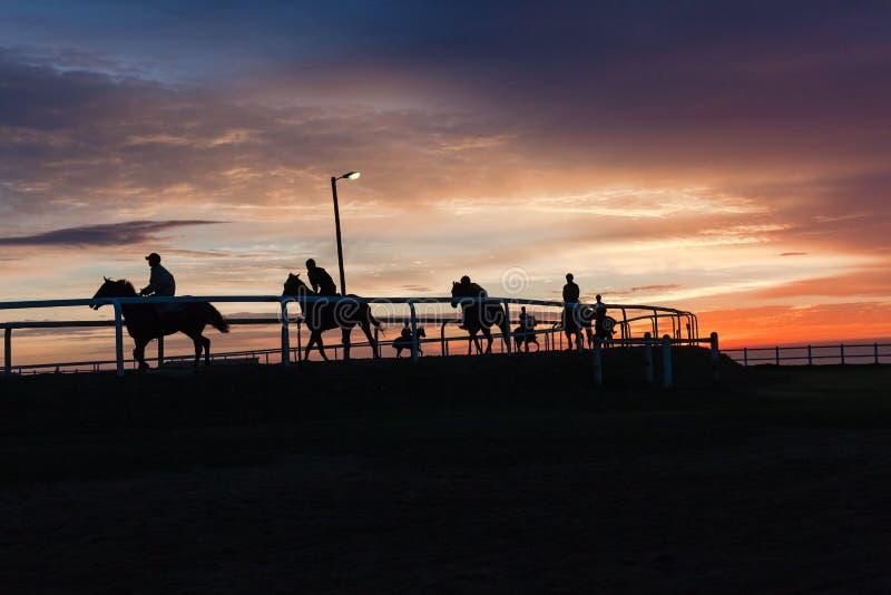 Landschap van paarden het Ruiters Gesilhouetteerde Kleuren royalty-vrije stock afbeelding
