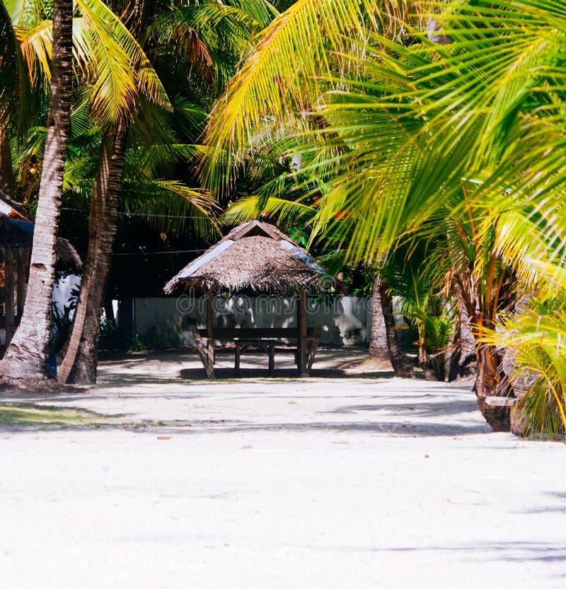 Landschap van paradijs tropisch eiland met palmen, plattelandshuisjes en wit zandstrand stock foto