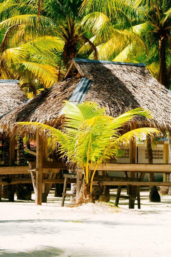 Landschap van paradijs tropisch eiland met palmen, plattelandshuisjes en wit zandstrand stock foto's