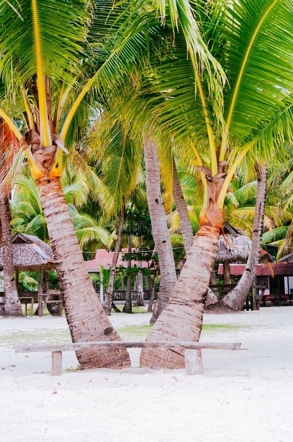 Landschap van paradijs tropisch eiland met palmen, plattelandshuisjes en wit zandstrand stock afbeeldingen