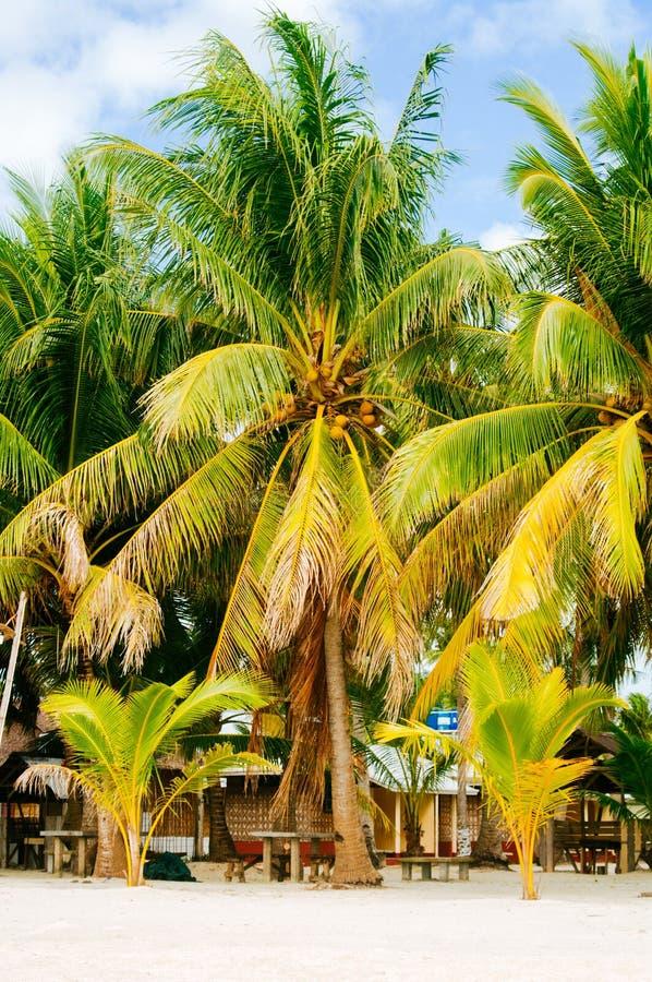 Landschap van paradijs tropisch eiland met palmen, plattelandshuisjes en wit zandstrand in Azië stock fotografie