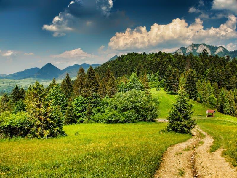 Landschap van Pieniny-bergketen en Trikoruny-pieken in Slowakije en Polen royalty-vrije stock afbeelding