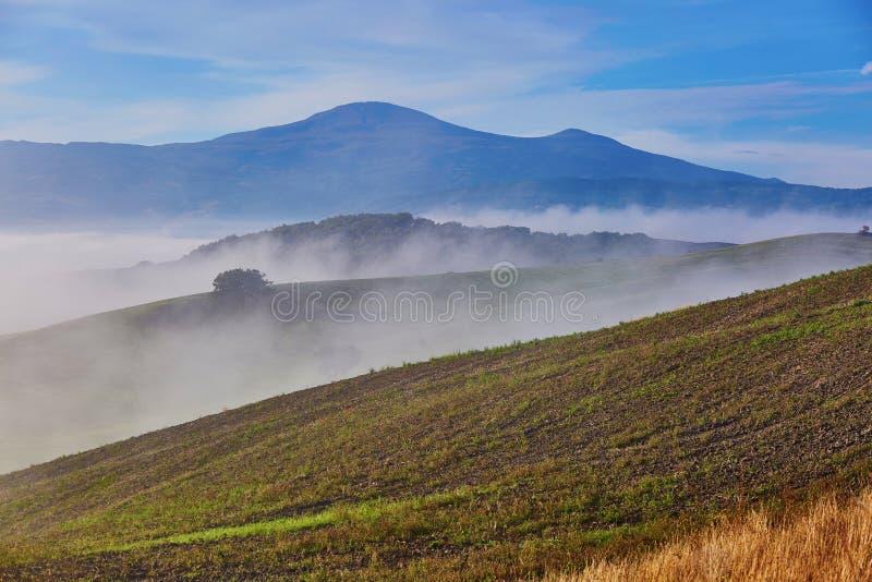 Landschap van San Quirico D ` Orcia, Toscanië, Italië royalty-vrije stock afbeelding
