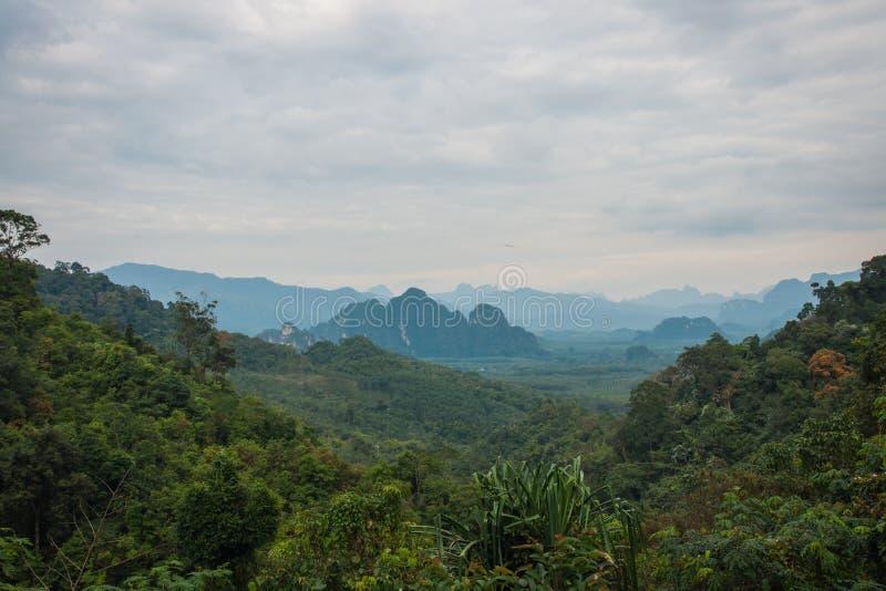 Landschap van tropisch regenwoud van het heiligdom van Khao Sok, Thailand royalty-vrije stock afbeelding