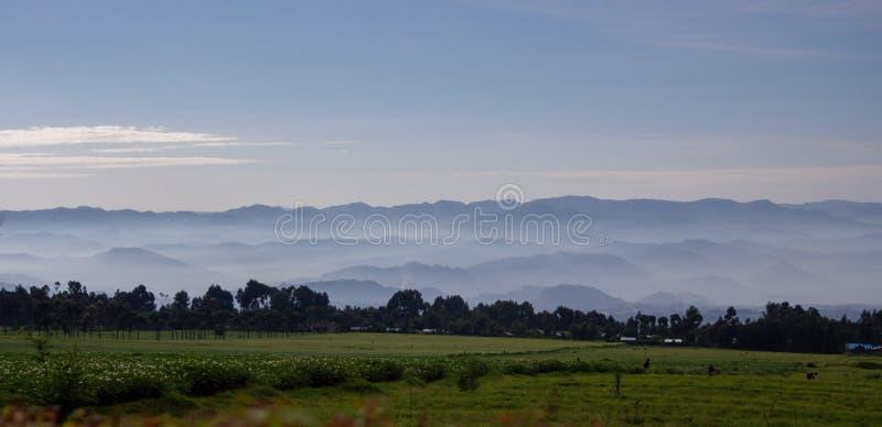 Landschap van Vulkanen Nationaal Park, Rwanda stock fotografie