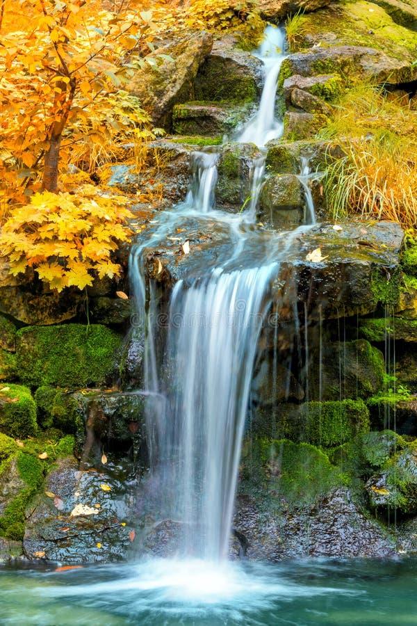 Landschap van Waterval in geel de Herfstbos royalty-vrije stock foto's