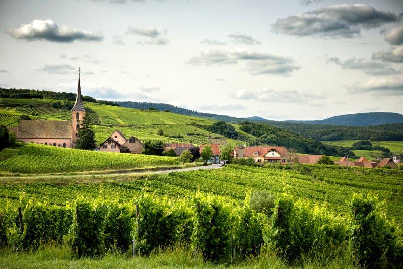 Landschap van wijngaarden in de Elzas frankrijk stock afbeelding
