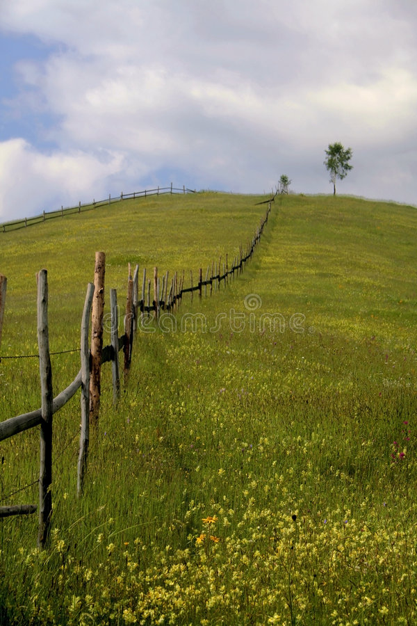 Landschap VI van de berg royalty-vrije stock afbeelding