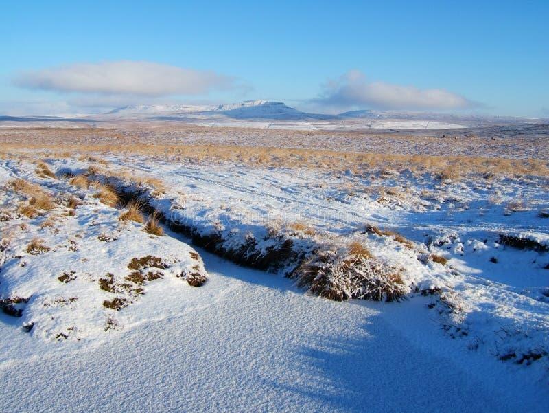 Landschap in Yorkshire Dallen stock foto