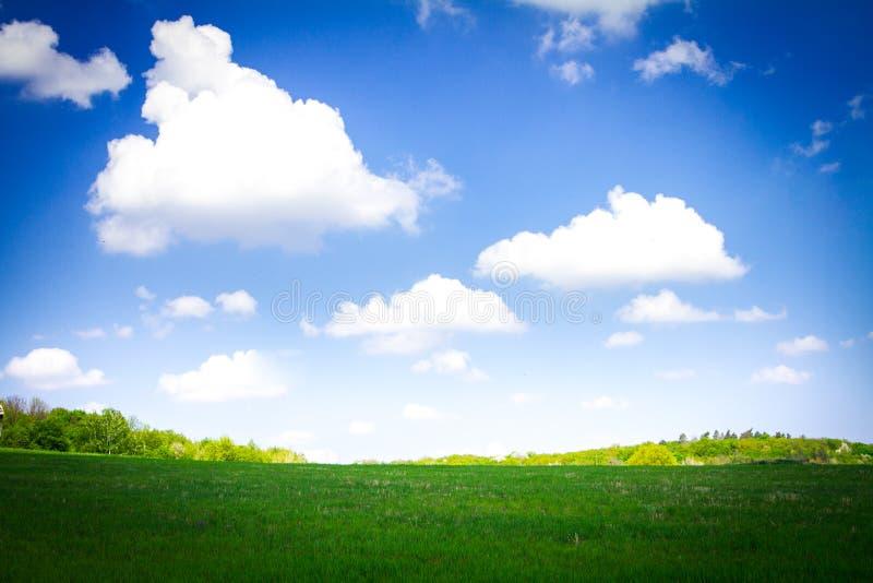 Landschap zoals vensters xp royalty-vrije stock afbeeldingen