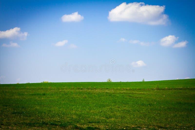 Landschap zoals vensters xp stock foto