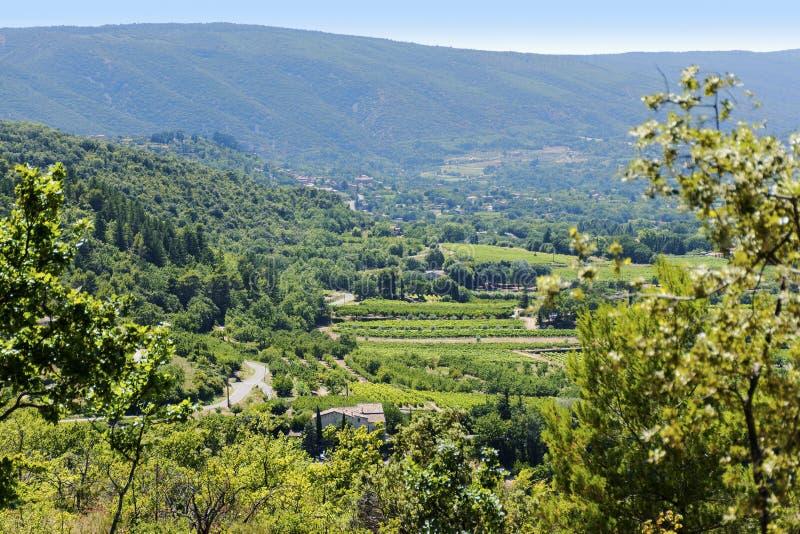 Landschap in Zuid-Europa met een oude wijnmakerij, wijngaarden, gebieden royalty-vrije stock afbeelding