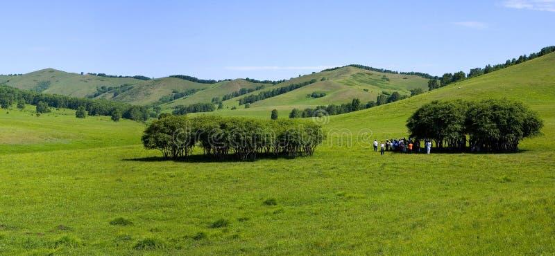 Landschappen van Weide stock afbeelding