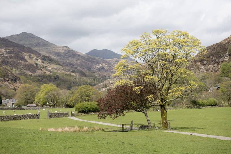 Landschapsbeeld van een landelijke die weg door heuvels wordt omringd royalty-vrije stock foto's
