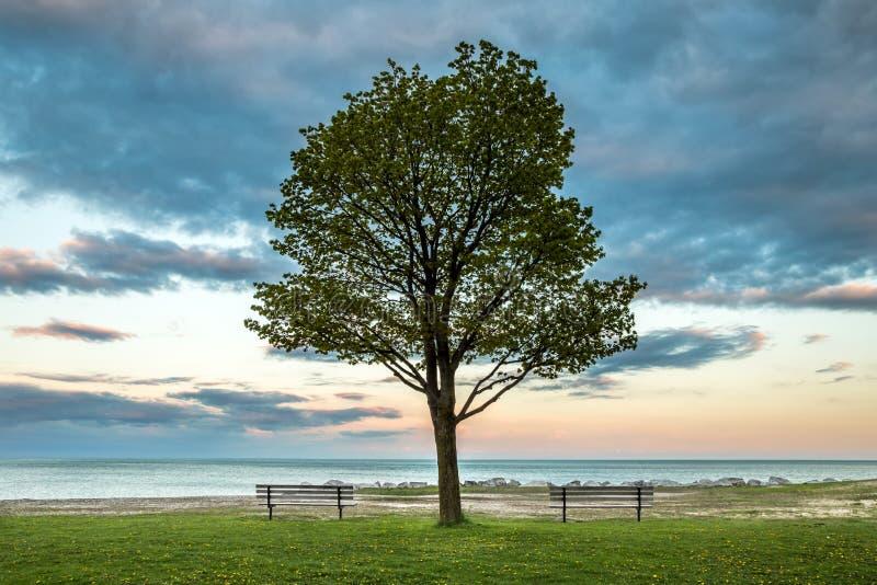 Landschapsbeeld van het park bij Meer Michigan royalty-vrije stock afbeeldingen
