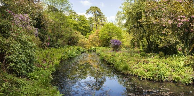 Landschapsbeeld van mooie gemodelleerde Tuinen in Dorset Englan stock afbeeldingen