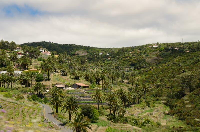 Landschapsmening over de vallei dichtbij de stad van Valle Gran Rey stock afbeeldingen