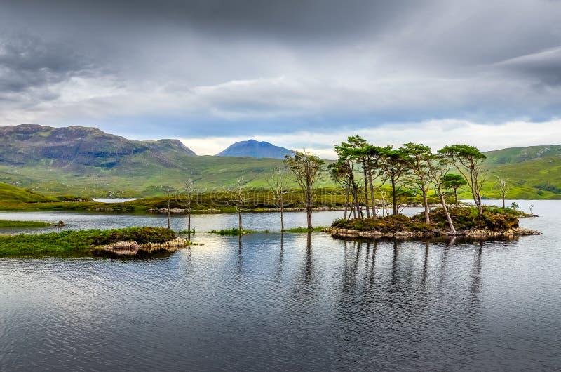 Download Landschapsmening Van Bomen In Een Meer, Schotland Stock Foto - Afbeelding bestaande uit nave, mist: 39105214