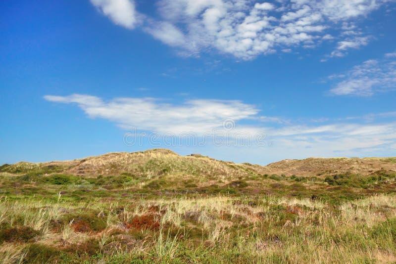 Landschapsmening van Loodsmansduin-duin nationaal park dichtbij Den Hoorn op Texel in Nederland royalty-vrije stock foto