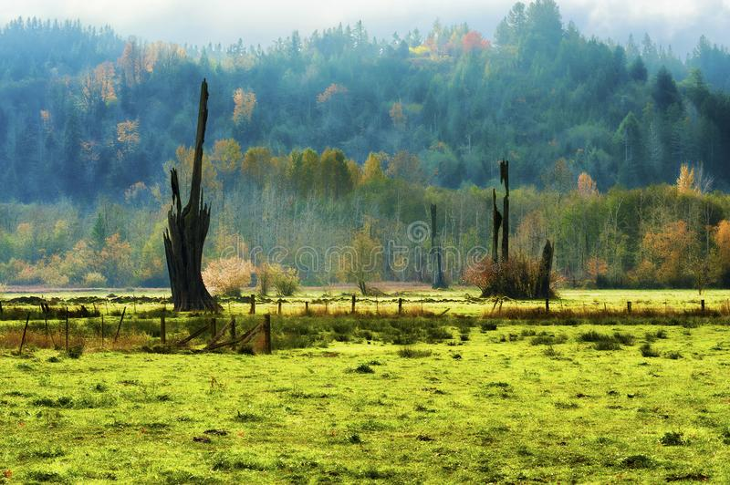 Landschapsmening van nevelige Oktober-ochtend in Shelton Washington stock afbeelding