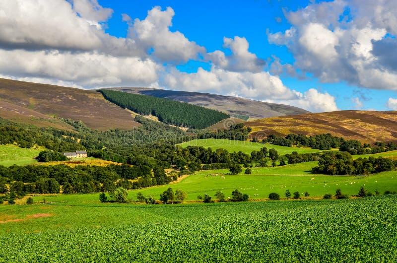 Download Landschapsmening Van Schotse Hooglandenweiden Stock Foto - Afbeelding bestaande uit heuvel, waaier: 39103920