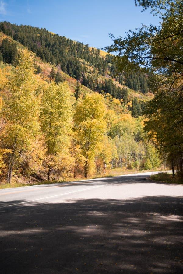 Landschapsmening van weg met bergen en dalingsgebladerte dichtbij Esp, Colorado stock foto