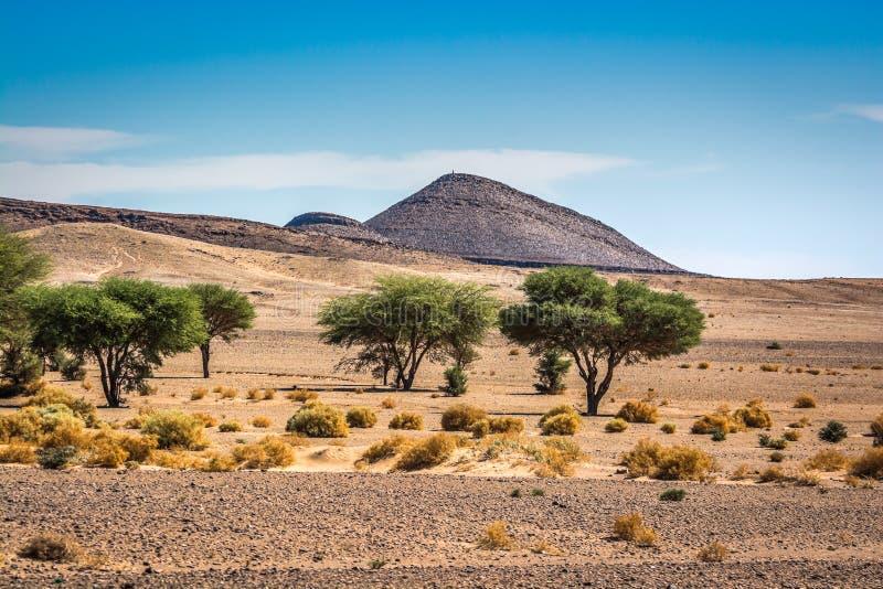 Landschapsmening in woestijn met bergen en bomen in Marokko stock foto's