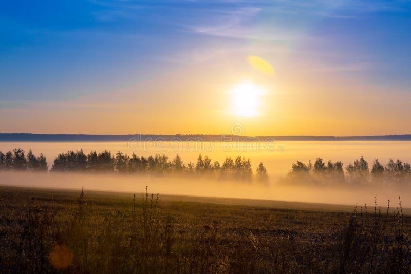 Landschapszonsopgang bij de zomer Mistige ochtend op weide Gefiltreerd beeld: kruis verwerkt effect Mooie nevelige zonsopgang royalty-vrije stock afbeeldingen