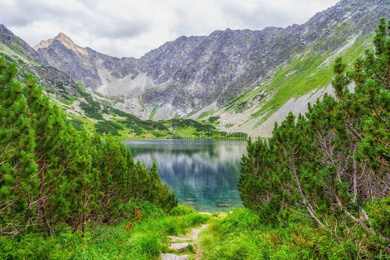 Landscpae do verão de Beautitul em montanhas altas de Tatras, Eslováquia fotografia de stock royalty free