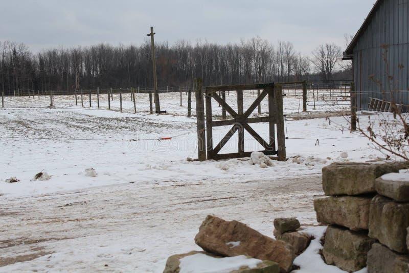 Landsfält som täckas i snö royaltyfria foton