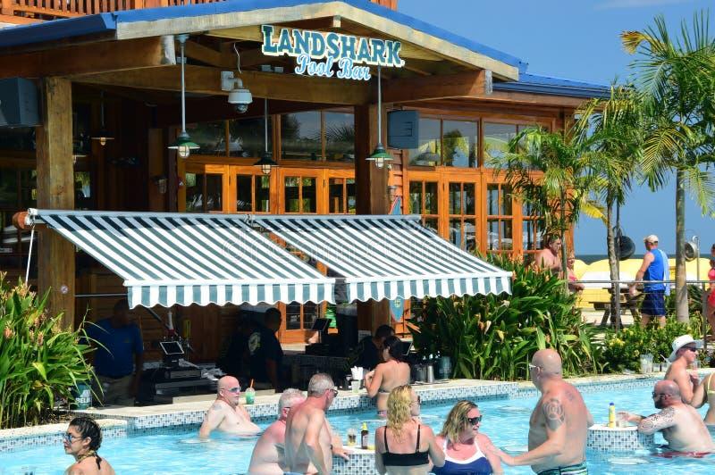 Landshark水池酒吧 库存图片